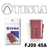 Tesla FJ0945A