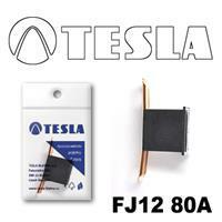 Tesla FJ1280A