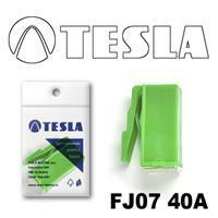 Tesla FJ0740A