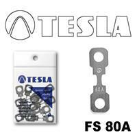 Tesla FS 80A.10