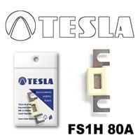 Tesla FS1H 80A