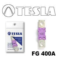 Tesla FG 400A