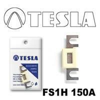 Tesla FS1H 150A