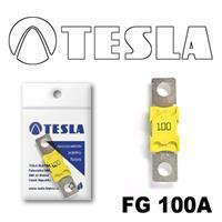 Tesla FG 100A