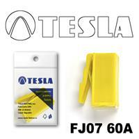 Tesla FJ0760A