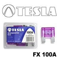 Tesla FX 100A.10
