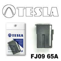 Tesla FJ0965A