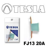 Tesla FJ1320A