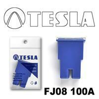 Tesla FJ08100A