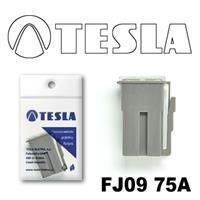 Tesla FJ0975A
