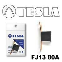Tesla FJ1380A