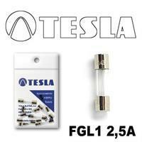 Tesla FGL1 2,5A.10