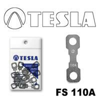 Tesla FS 110A.10
