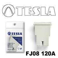 Tesla FJ08 120A