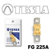 Tesla FG 225A