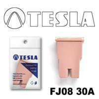 Tesla FJ0830A