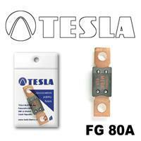 Tesla FG 80A