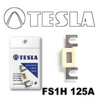 Tesla FS1H 125A