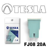 Tesla FJ0820A
