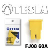 Tesla FJ0860A