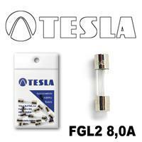 Tesla FGL2 8,0 A.10