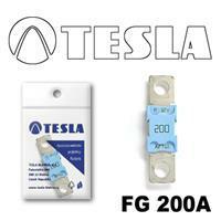 Tesla FG 200A