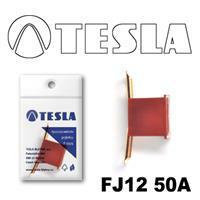 Tesla FJ1250A