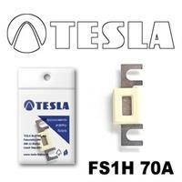 Tesla FS1H 70A