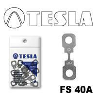 Tesla FS 40A.10