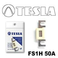 Tesla FS1H 50A