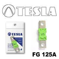 Tesla FG 125A
