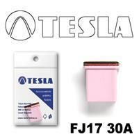 Tesla FJ17 30A