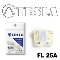 Tesla FL 25A.10