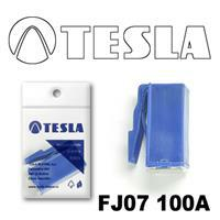 Tesla FJ07100A
