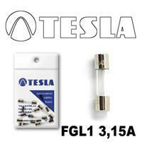 Tesla FGL1 3,15A.10