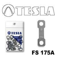 Tesla FS 175A.10