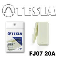 Tesla FJ0720A
