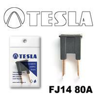 Tesla FJ14 80A