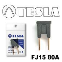 Tesla FJ1580A