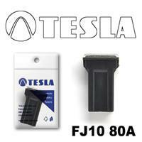 Tesla FJ1080A