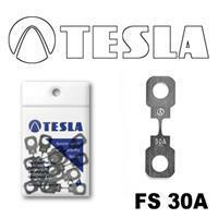 Tesla FS 30A.10